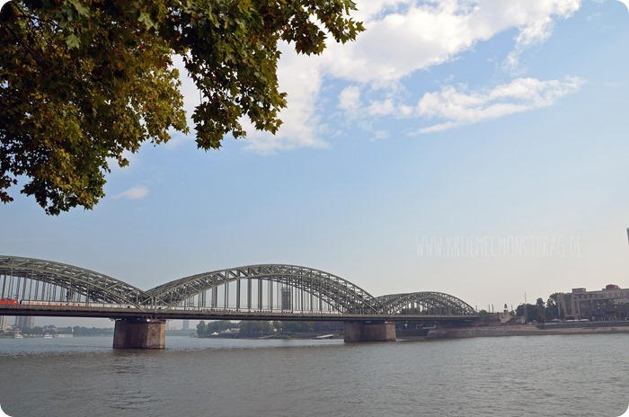 Köln2014 amRheinufer16