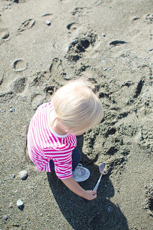 Faye Bainbridge Beach in Washington `