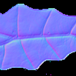 Leaf texture normal