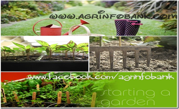 April 2013 | Agriculture Information Bank