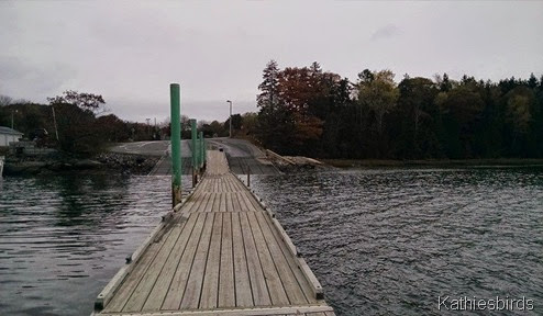 10-21-14 view from dock