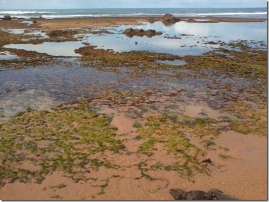 2012-06-02 - 66 Praia