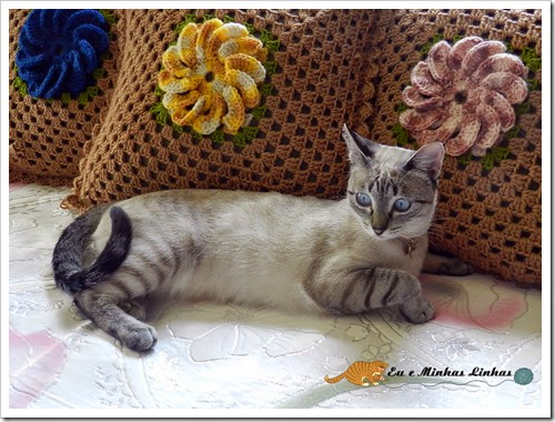 Almofada Croche Flor Lã 1c