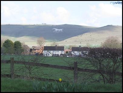 7 White Horse 1