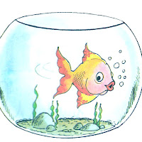 aquário colorido.jpg