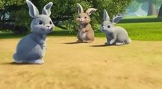 06 les lapins