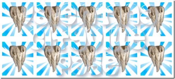 5 stalattiti