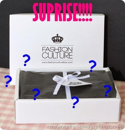 Fashion Culture Surprise