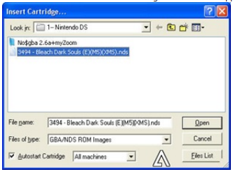 Nintendo DS Emulator For PC Windows All Version By MegameSoft