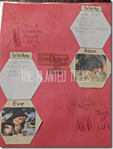 Adam and Eve lapbook