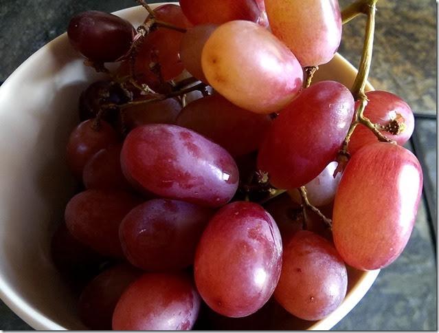 grapes-public-domain-pictures-1 (2264)