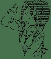 Shiguma Rika (Boku wa Tomodachi ga Sukunai)