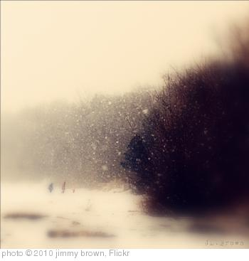 'Winter Walk      ' photo (c) 2010, jimmy brown - license: http://creativecommons.org/licenses/by/2.0/