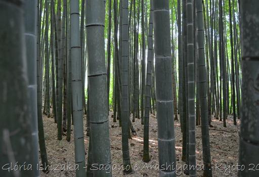 58 - Glória Ishizaka - Arashiyama e Sagano - Kyoto - 2012