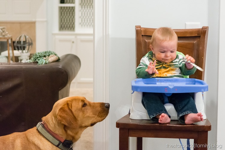Ethan and Simon in highchair blog-1