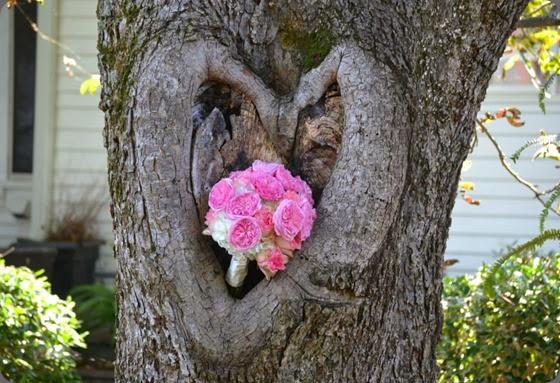 heart 1385248_540037232738759_976311260_n hacman floral