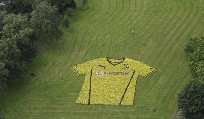 borussia jersey 2013 2014 2