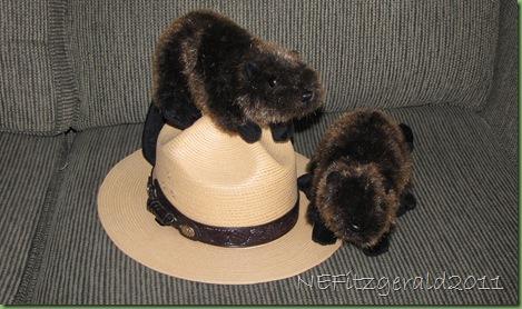 BeaverFriends
