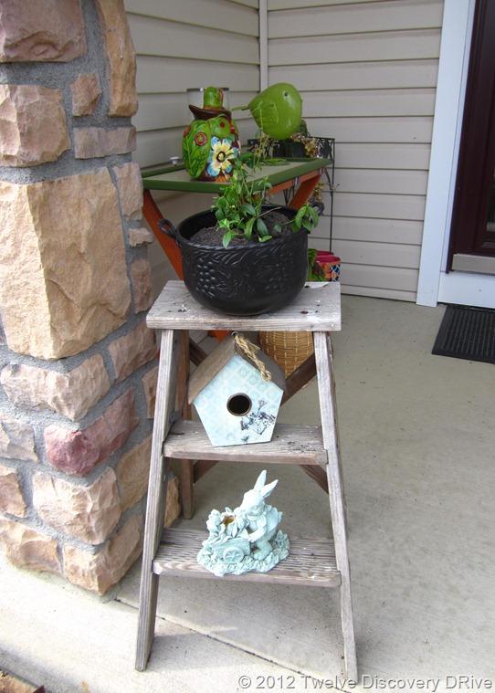 Outdoor Gardening 2012 013