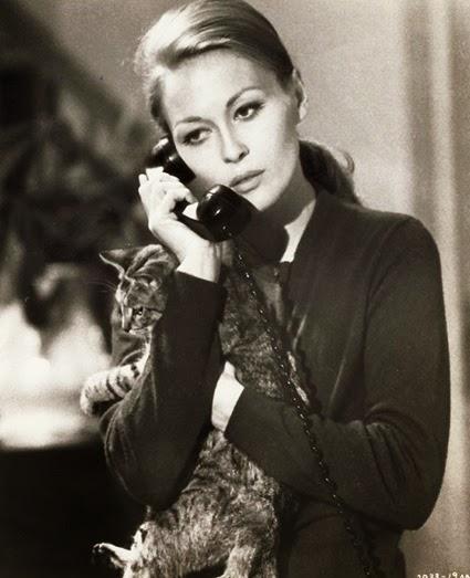 Faye Dunaway 009