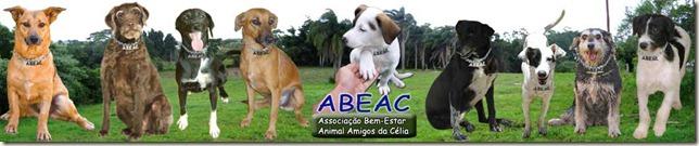 banner_abeac