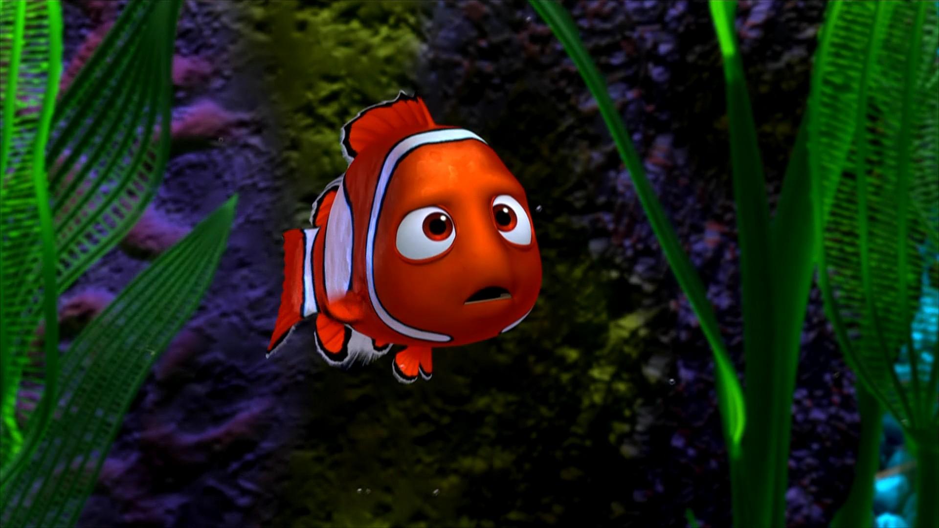 Gambar Finding Nemo