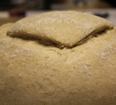 spelt-country-french-bread_121
