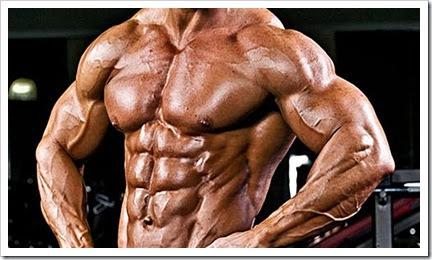 Fibras Musculares de contração rápida