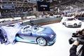 Bugatti-Veyron-GS-Vitesse-18