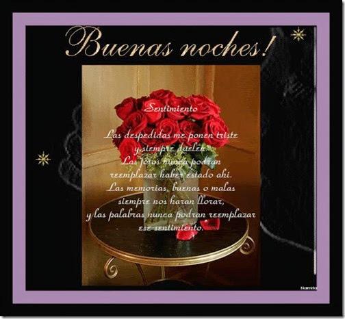 BUENAS NOCHES (10)