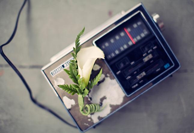 101 clayton austin photo