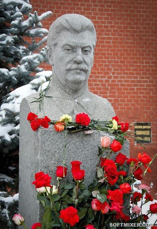 Stalin_flower