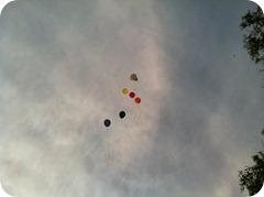 Boise Balloons (2)