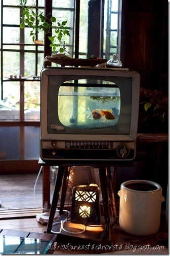 tv acquarium