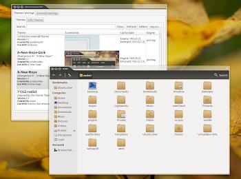 Emerald su Ubuntu 13.04