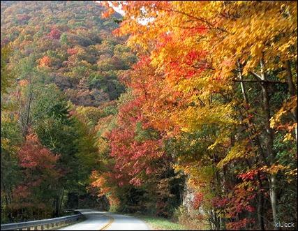fall foliage off hwy 75?