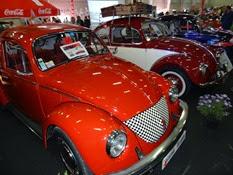 2014.09.27-032 VW Coccinelles