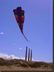 Kite Festival 2014 009