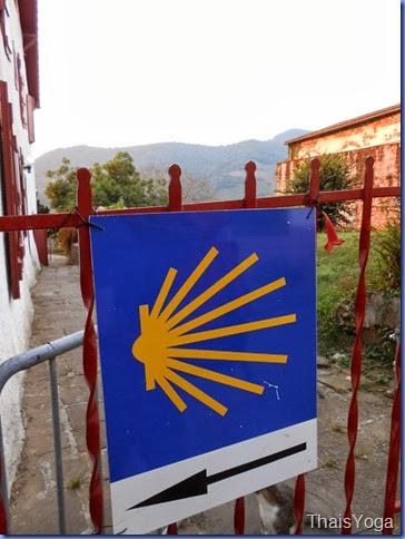 caminho de santiago 041