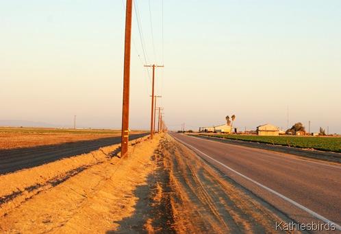 3. DSC_0097 Bannister road-kab