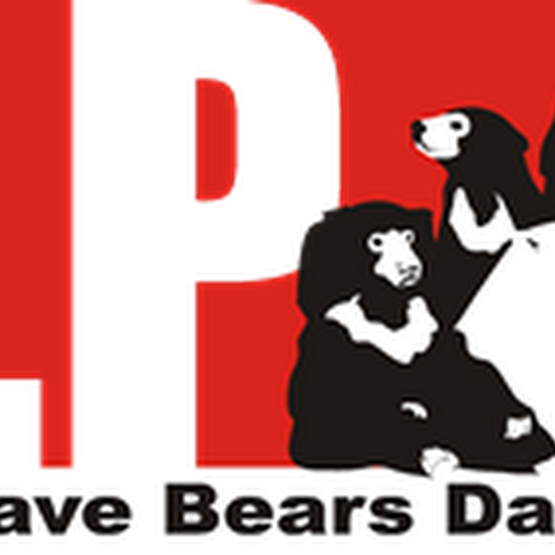 International Save Bears Day
