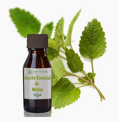 aceite-esencial-de-melisa