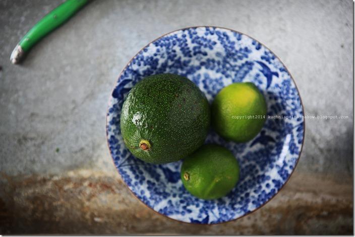 guacamole (5)