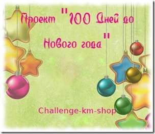 1010 - копия
