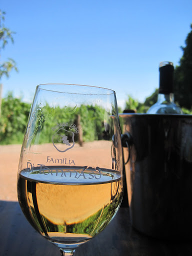 Lunch and wine overlooking the vineyards at Familia Di Tommaso.