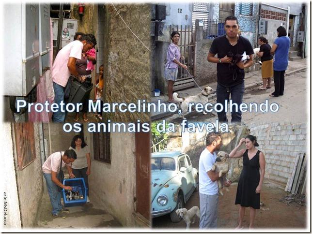 marcelinho_protetor01