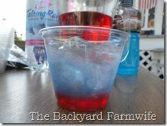 The Backyard Farmwife- 4th of July treats