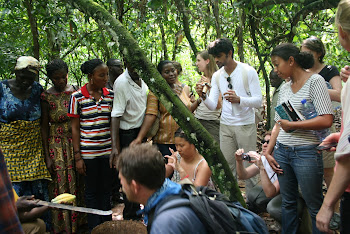 'Learning in action at  Kuapa Kokoo Cocoa farm outside of Kumasi' Photo by Sandra Vu