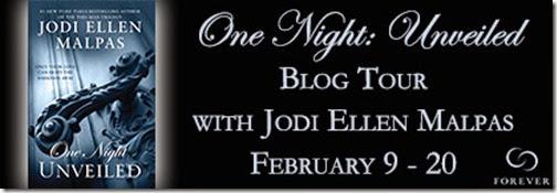 One-Night-Unveiled-Blog-Tour