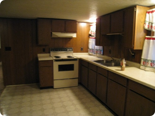 kitchen2_before_newapartment